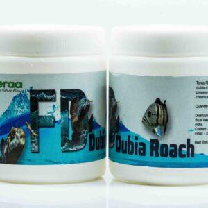 Teraa FD Dubia Roaches