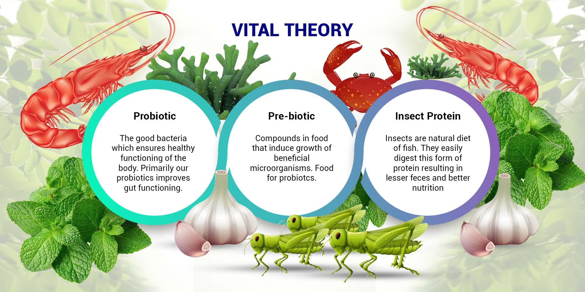 Biotics System1